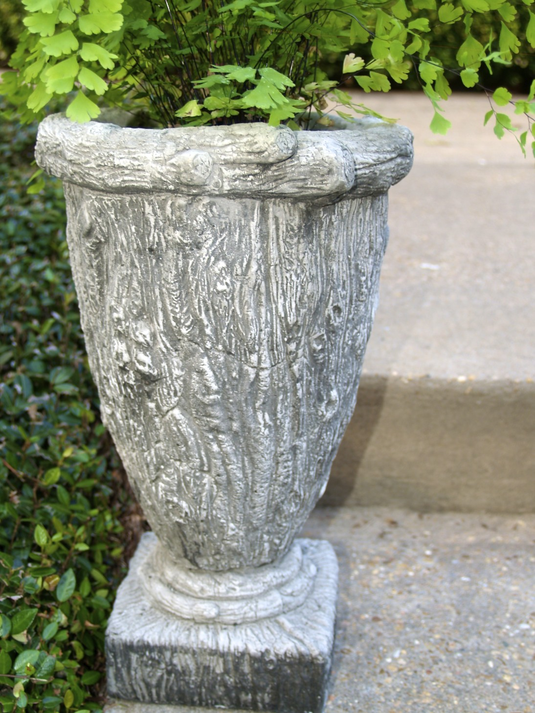 I found these fabulous concrete containers - Cloth cement plant pots ...