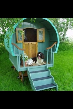 Dog Play House
