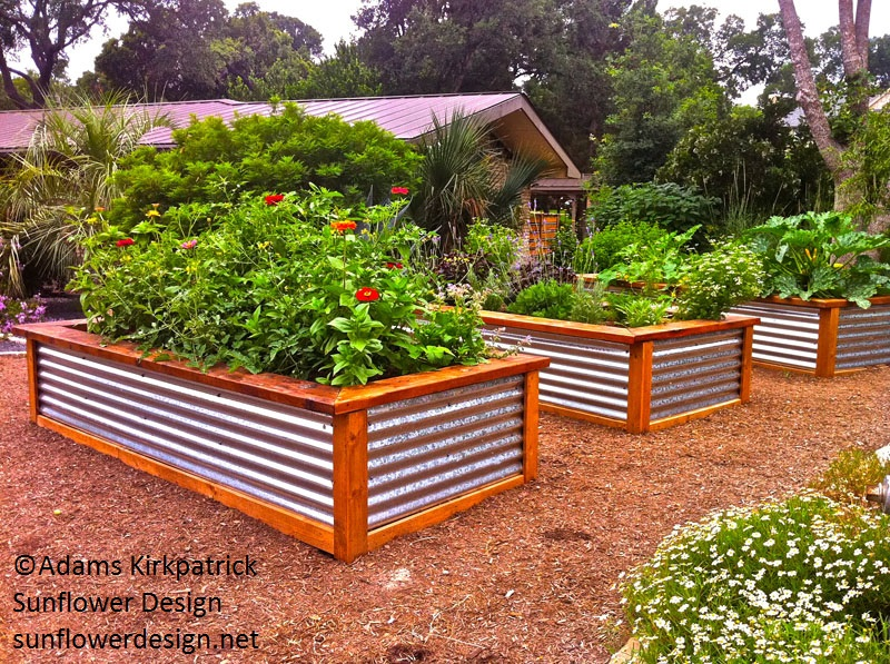 Raised beds for Garden bed designs